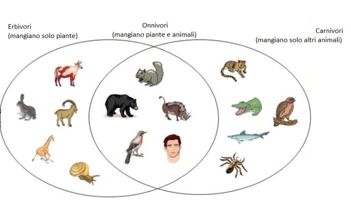 diagramma venn